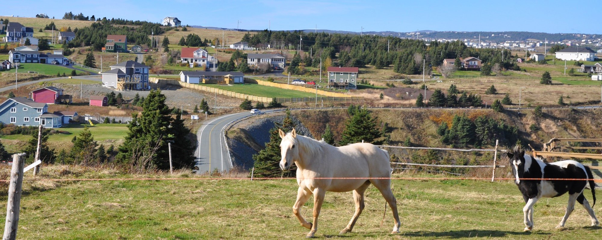 homes for sale in Logy Bay